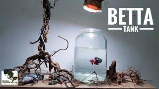 BETTA Fish   HardScape Membuat Aquascape 水草造景