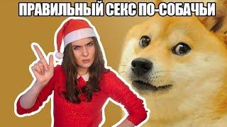 Новый год собаки в догги стайл. Изучаем тонкости секс по-собачьи