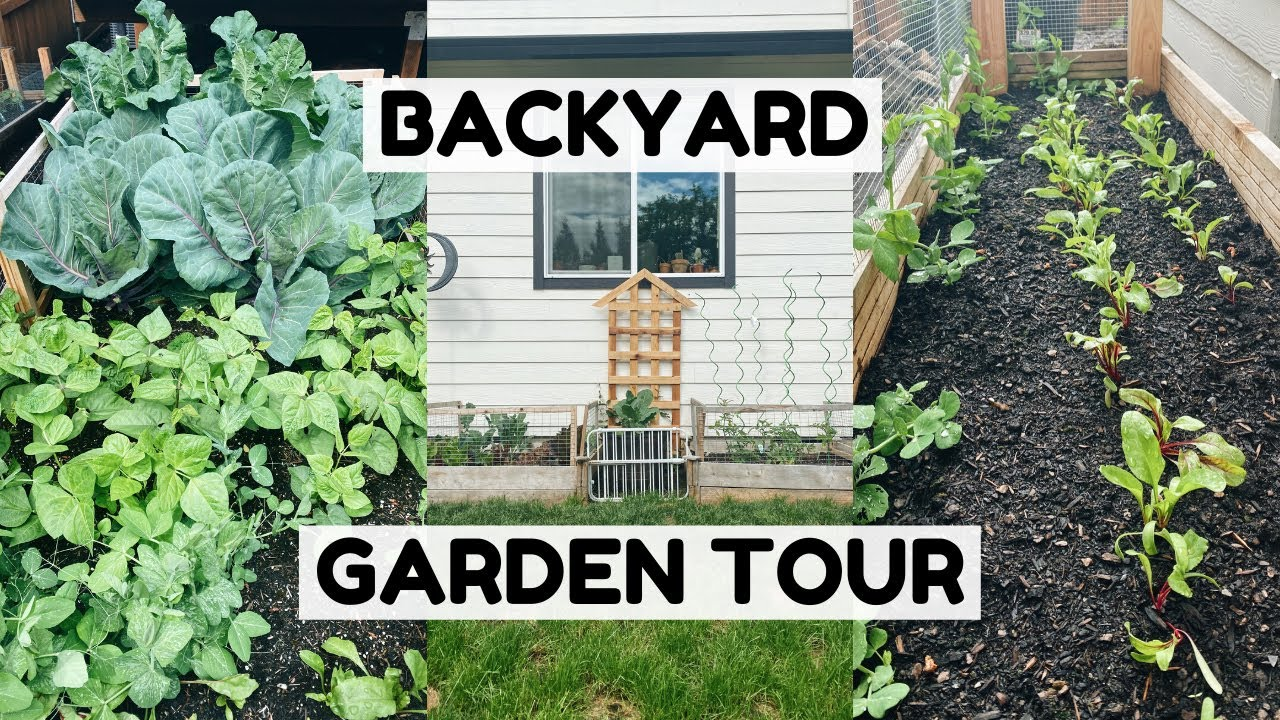Backyard Garden Tour | 5 Raised Beds!