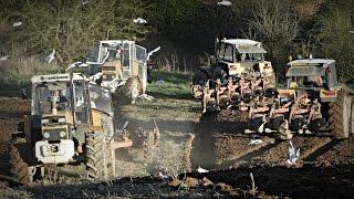 WIOSNA 2016 w Gospodarstwie Rolnym Mokrzyn
