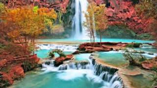 Ali Mola Ali Mola Song By Muhammad Waqas 0342-6377455