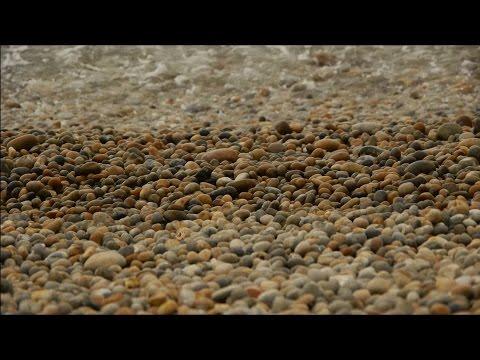 White Sound: An Urban Seascape | Bill Fontana