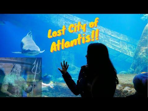 Lost City of Atlantis Long Island Aquarium