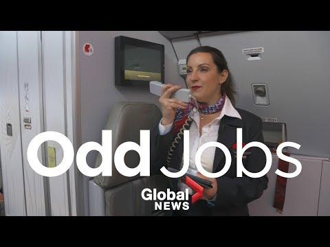 Odd Jobs: Flight Attendant