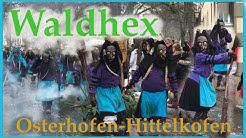 Narrenzunft Waldhex Osterhofen-Hittelkofen e.V. beim Umzug in Wolfegg.