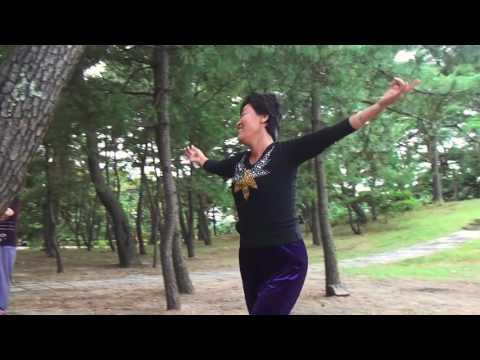 North korean woman dancing in the countryside Chilbo sea, North Korea