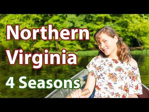 northern-virginia-four-seasons---things-to-do-near-washington-dc
