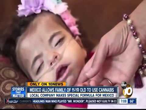 ABC 10 News San Diego Features the Approval of HempMeds' RSHO-X for Young Patients in Mexico