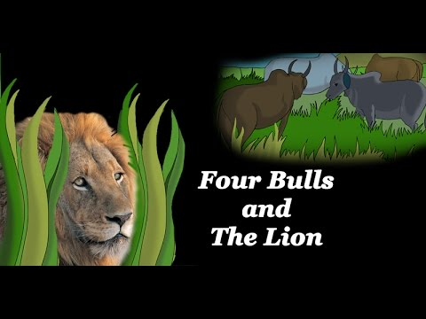 Illustrated Story - Four bulls and lion