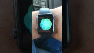 Breathe App on Apple Watch