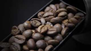 MASCAF Coffee Wholesale Provider | Mission Statement to Biofach 2013 | Nuremberg, Alemania