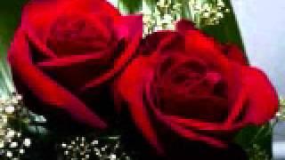Las Dos Rosas  Cuando más tranquila te halles
