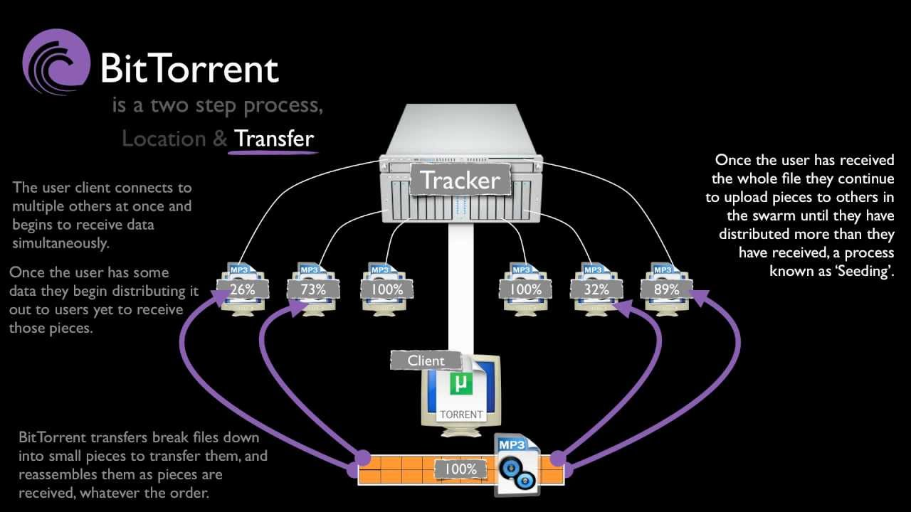 How Does BitTorrent Work?