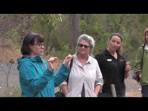 Community Education Black Cockatoo Survival