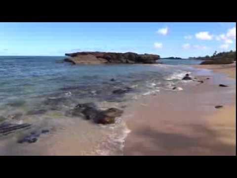 Alligator Rock Beach - Oahu, Hawaii