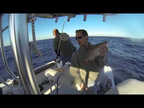 SeaOx Offshore Fishing 2014