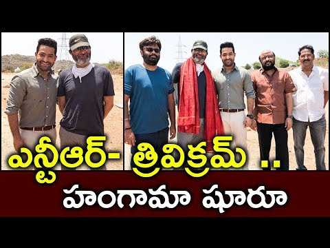 Ntr Trivikram Movie Shooting Starts | Jr NTR Latest Look | Pooja Hegde |  S9 Tv News