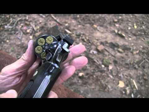 .44 Magnum Model 29  8-inch  (Close-up)