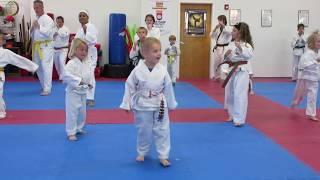 Learning Karate 2016
