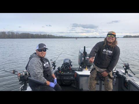 Springer Fishing Live! 🐟(Live Fishing Show)