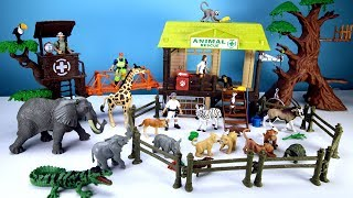 Jungle Wild Animal Care Playset For Kids - Learn Animals Names Toys Video