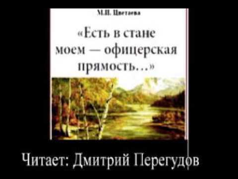 Изображение предпросмотра прочтения – ДмитрийПерегудов читает произведение «Есть в стане моём — офицерская прямость» М.И.Цветаевой