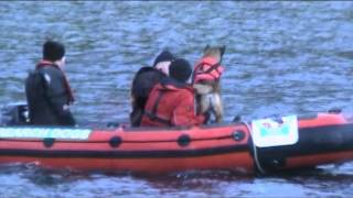 Sarda Ireland North Drowned Victim Search Dog Training