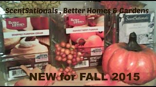 ScentSationals &  Better Homes and Gardens NEW FALL Wax  - VanScott #58