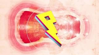 Cash Cash & Digital Farm Animals - Millionaire ft. Nelly