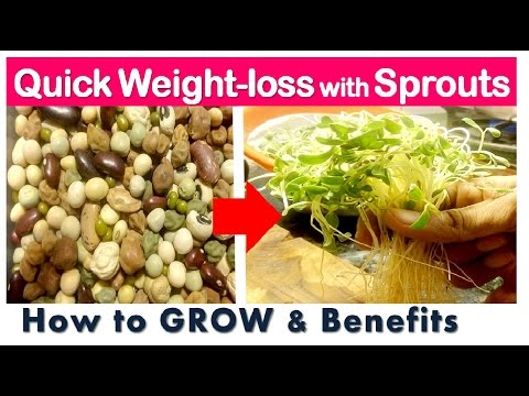 Quick Weightloss with Sprouts, Health Benefits of Sprouts, How to GROW SPROUTS and its Recipe,