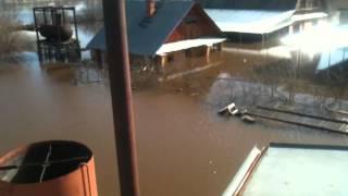 """Наводнение Кимры дачный поселок """"Нутромо"""""""
