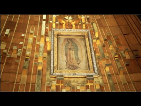 A Pilgrimage to Mexico and The Shrine of Our Lady of Guadalupe