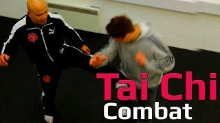 Tai chi combat tai chi chuan - tai chi attack body. Q48