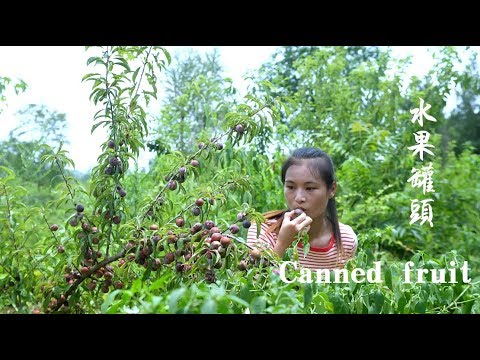 山上的紫李和黄桃都成熟了,摘回来做成孩子最爱的水果罐头 Canned Black Plum And Yellow Peach