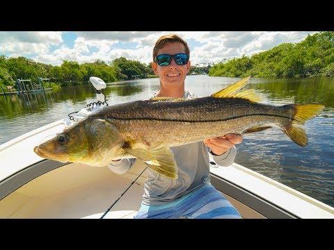 Artificial Vs Live Bait CHALLENGE...(Bonita Springs Inshore Fishing)