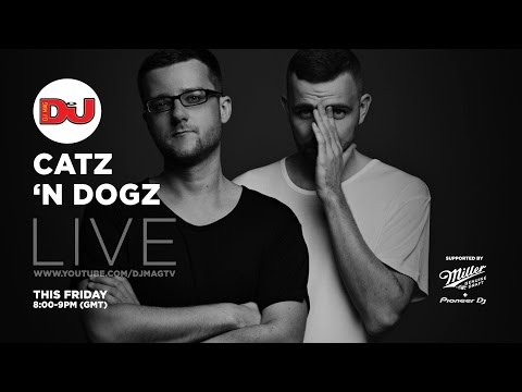Catz 'N Dogz LIVE from DJ Mag HQ
