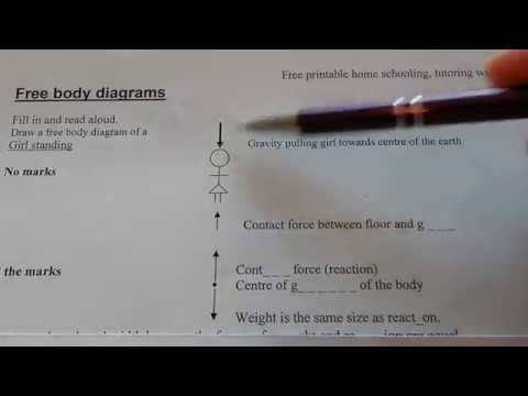 hqdefault free body diagrams youtube