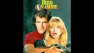 The Neville Brothers - Bird on a Wire 2011 Lyrics