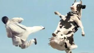Ya lili Ya lila / Elili elila ( Yalili Remix ) Arabic Remix | lai lai lai kungfu Cow funny fight 😂😂
