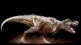 видео Дикие животные в условиях современного развития цивилизации человека Дикие звери сегодня
