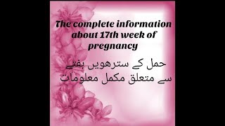Pregnancy At 17TH Week ||The Complete Mother's Guide About 17th Week Of Pregnancy||