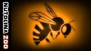 Bienen summen / Bienen geräusch / Bijen geluid / Ronzio ape