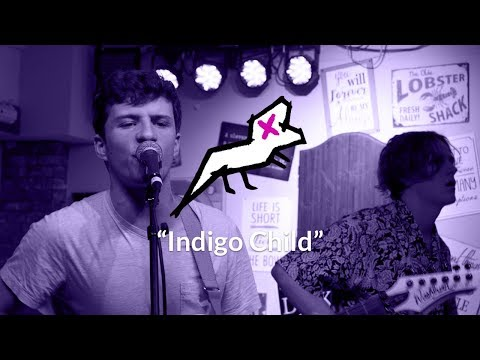 Dolly and the Dinosaur - Indigo Child (Live at The Rockhouse)