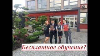 Бесплатное обучение в Чехии. Правда или ложь? Бакалавриат в Чехии. Мой опыт.