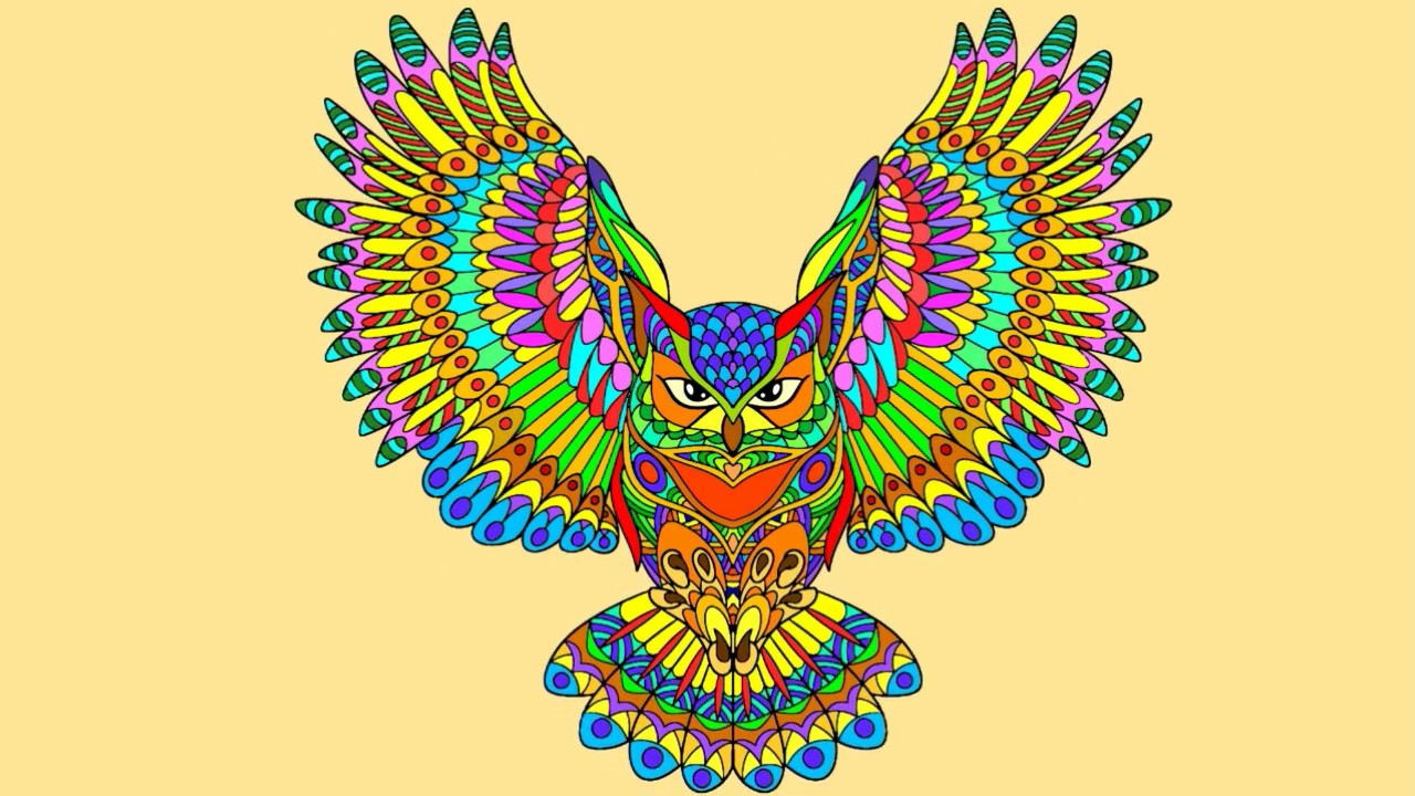 Búho Mandala Para Colorear Mandala Owl Coloring Youtube