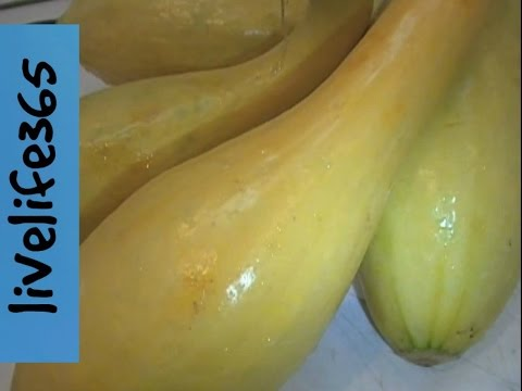 Why Eat Yellow (Crookneck) Squash?