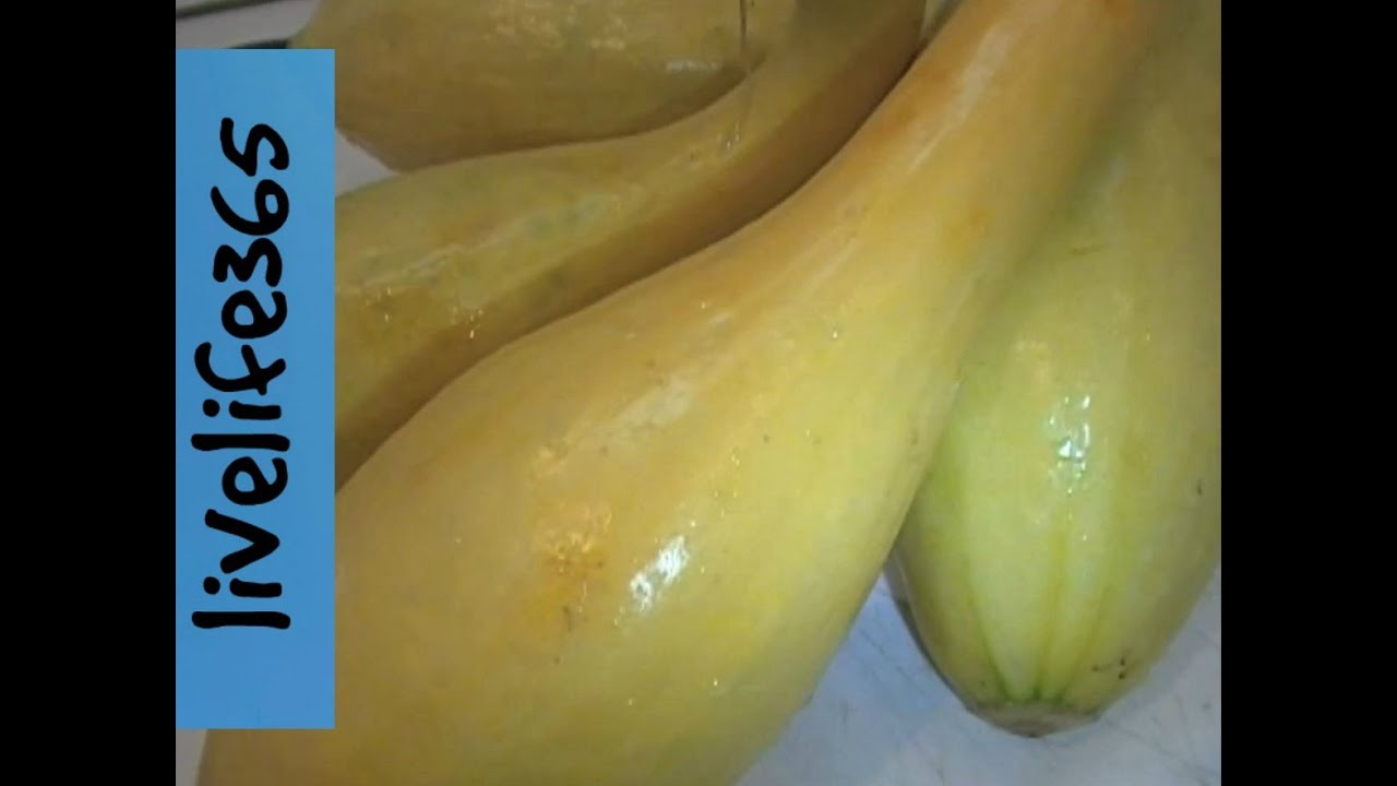 Why Eat Yellow Crookneck Squash Youtube