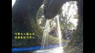士林官邸菊花展心得+ 菊花台 二胡音樂 影片