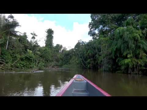 """Just"" traveling up the Amazon River in Ecuador"