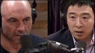 Andrew Yang on Why Life Expectancy for Americans is Declining | Joe Rogan